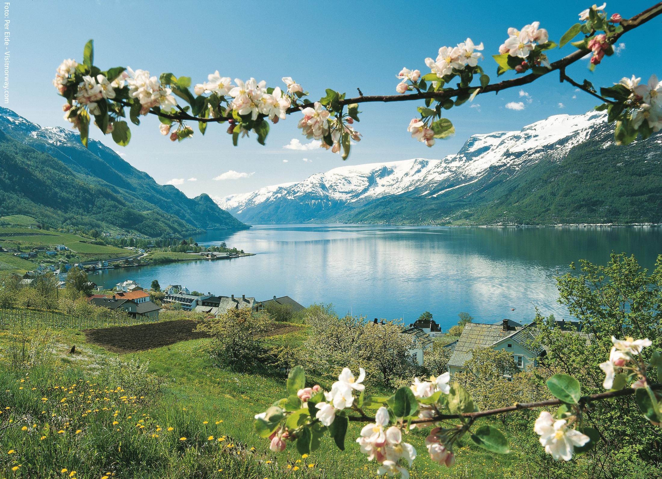 Tur til Ulvik, Hardanger